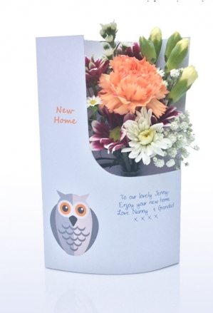new-home-owl